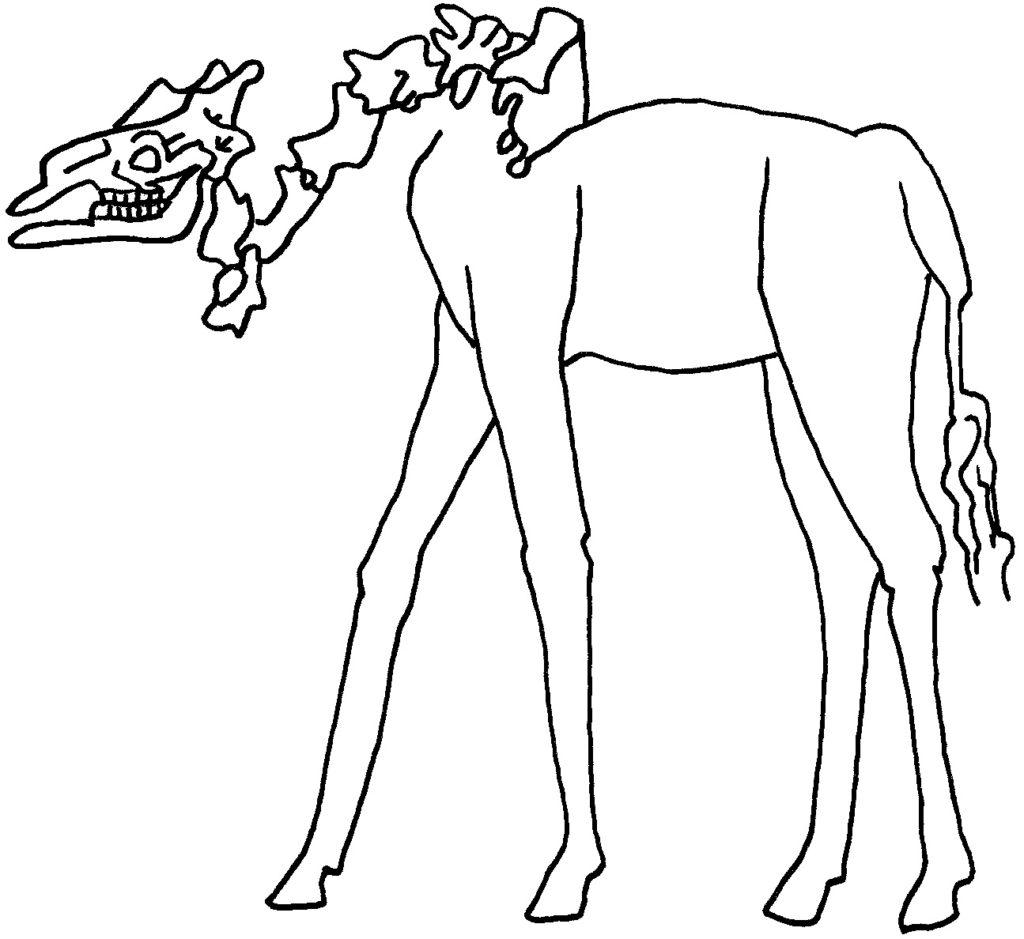 giraffe-nieder